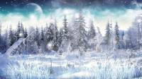 Winter Snow Animated Wallpaper screenshot