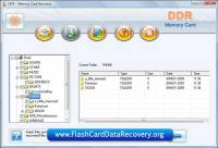Flash Card Data Recovery screenshot