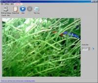 CamShot Monitoring Software screenshot