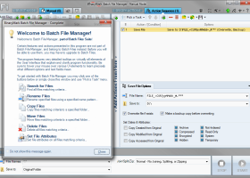 Batch File Manager Free screenshot