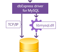 dbExpress driver for MySQL screenshot