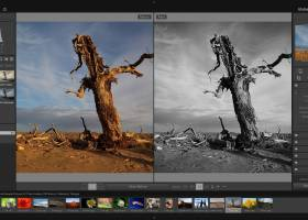 PT Photo Editor - Free Edition screenshot